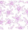 Seamless pattern drawing lily flowers vector image