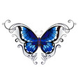 tattoo blue butterfly vector image vector image