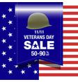 veterans day sale banner vector image
