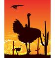 Ostrich wildlife background vector image