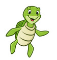 cartoon sea turtle vector image