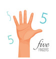 five fingers poster with headline male hand vector image vector image