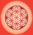 Flower of life seed mandala vector image vector image