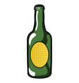 isolated bottle icon vector image