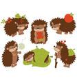 set of cute cartoon hedgehogs vector image vector image