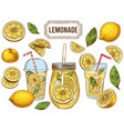 sketch lemonade summer cold drinks hand drawn vector image vector image