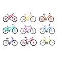 Bicycle Set Design Flat Isolated vector image vector image