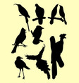 birds silhouette vector image vector image