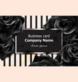 black roses business card elegant luxury vector image