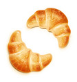 croissant traditional french vector image vector image
