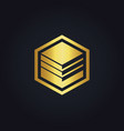 cube data business gold logo vector image vector image
