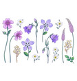 hand drawn colorful wild flowers set vector image vector image