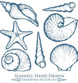 Hand Drawn Seashell Set vector image vector image