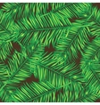 Palm leaves Seamless background Floral vector image