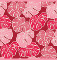 pink monstera leaves tropical vector image