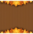 Autumn knitted warm background with space for text vector image vector image