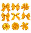 big set gold gift bows with ribbons vector image