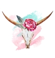 Bull skull watercolor vector image