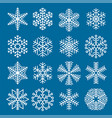 flat design christmas snowflakes vector image vector image