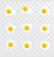fried egg shape variant set image vector image