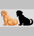 golden retriever dog and its silhouette vector image