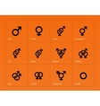Male and Female sex symbol icons on orange vector image