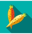 Two carrots icon in flat style vector image vector image