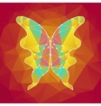 1 Butterfly vector image