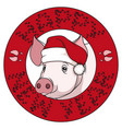 Color drawing a pig in a christmas cap