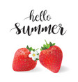 hello summer strawberries vector image vector image