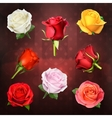 Roses icons vector image vector image