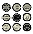 vintage badges set collection of premium design vector image vector image