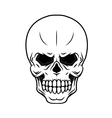 Danger cartoon skull vector image vector image