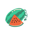 ripe watermelon summer time symbol vector image