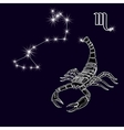 The constellation Scorpius White scorpion zodiac vector image