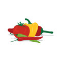tomato and peppers vector image vector image