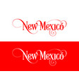 typography of the usa new mexico states vector image vector image