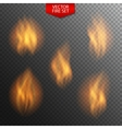 Naturalistic Fire on Dark Transparent Background vector image vector image