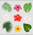 tropical leaves and flowers icon set vector image