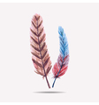 with watercolor feathers vector image vector image