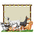 canvas wooden frame template with cute dogs group vector image