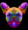 colorful french bulldog on pop art style vector image vector image