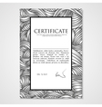 Graphic design template document with hand-drawn vector image vector image