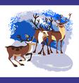 herd deer vector image vector image