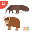 Letter Y Cute animals Funny cartoon animals in vector image vector image