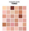 skin tone color chart human skin texture color vector image