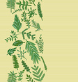 herbal border pattern hand drawn vector image