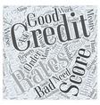 bad credit score Word Cloud Concept vector image vector image