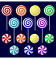 delicious lollipop collection vector image vector image