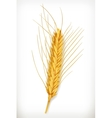 Ear of wheat icon vector image vector image